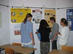 Students working with teachers - project work